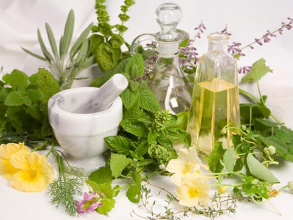 Домашната билкова аптека бълва здраве