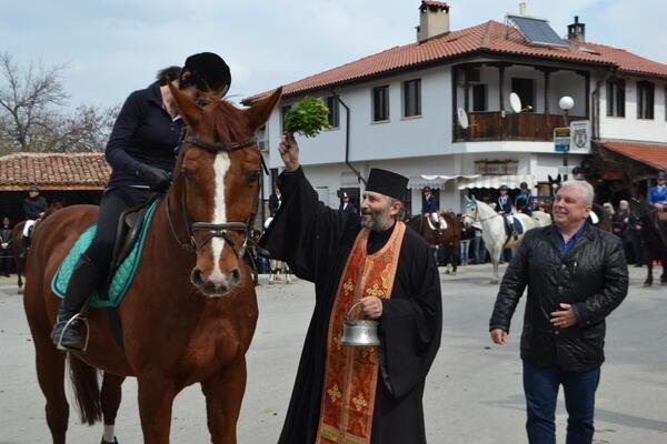 Жребецът Марк Антоний получи награда за най-гиздав кон