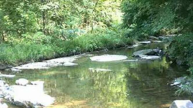 Река Костелска