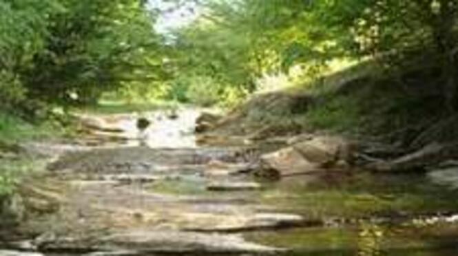 Река Мийковска