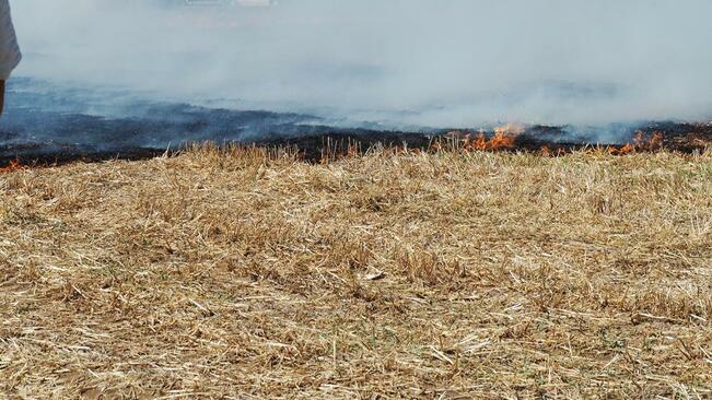 Четири пожара за 7 часа гасиха огнеборци от Разградско