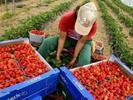 Обучение за земеделски производители в Силистра