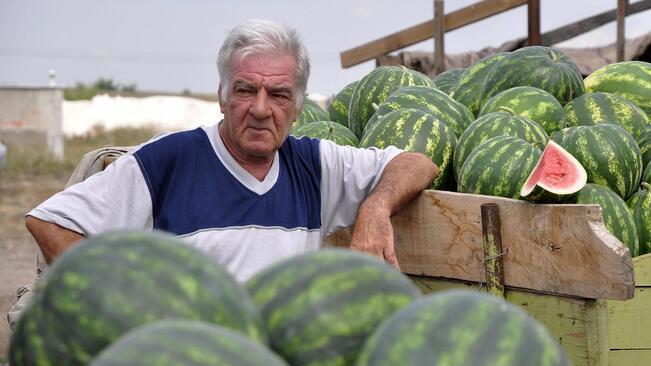 40 млн. лв. за 9 450 производители на плодове и зеленчуци